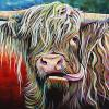 "Hamish the Heilan' coo, 20"" x 30"", acrylic on canvas"
