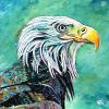 "Stephen's Bald Eagle, 20"" x 20"", acrylic on canvas"