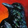 "Stettler Raven, 24"" x 24"", acrylic on canvas"