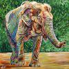 "Elephant Walking, 30"" x 30"", acrylic on canvas"