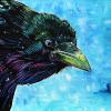 "Best Western Raven, 16"" x 20"", acrylic on canvas"