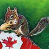 "Canadian Squirrel, 11"" x 14"", acrylic on canvas"