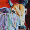 "Khmer Cow, 12"" x 16"", acrylic on canvas"